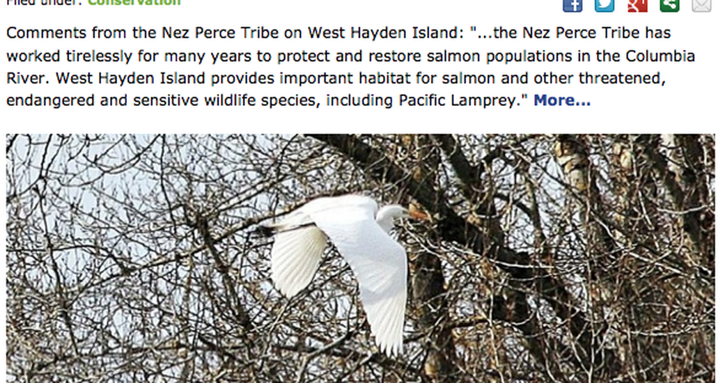 Blog & Social Sharing Enhancements for Audubon Society of Portland